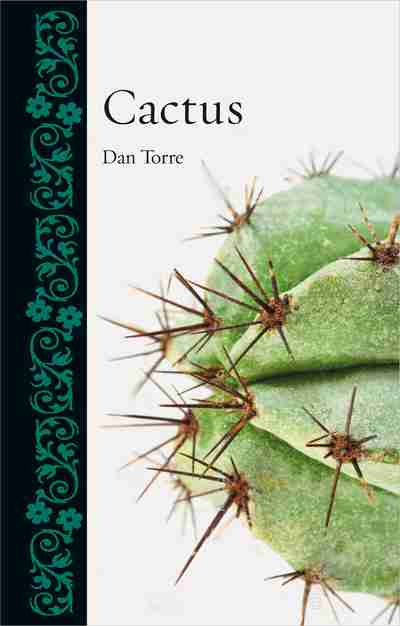 Cover of Cactus